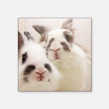 "Close up of Rabbits Square Sticker 3"" x 3"""
