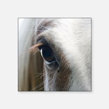 """Close up of White horse eye Square Sticker 3"""" x 3"""""""