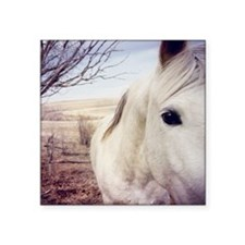 "Close up of white horse eye Square Sticker 3"" x 3"""