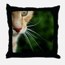 Ginger Cat Throw Pillow