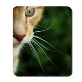 Cat themed Classic Mousepad