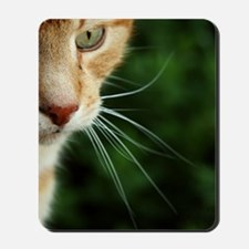 Ginger Cat Mousepad