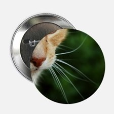 """Ginger Cat 2.25"""" Button"""