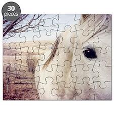 Close up of white horse eye. Puzzle