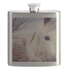 Close up of white horse eye. Flask