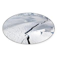 Cracks in ice of IJsselmeer, Europe Decal