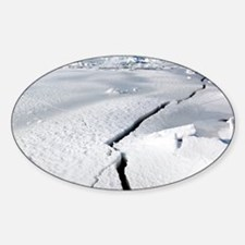 Cracks in ice of IJsselmeer, Europe Decal