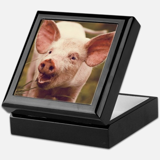 Happy little piglet. Keepsake Box