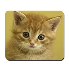 KITTY CAT Mousepad