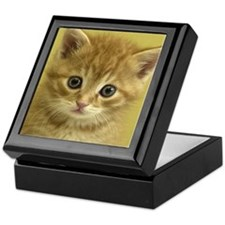 KITTY CAT Keepsake Box