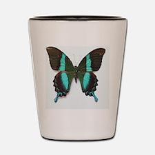 Emerald Swallowtail Butterfly Shot Glass