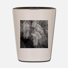 Ferns in the tropical house of the Bota Shot Glass