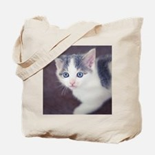 Kitten looking up with big blue eyes. Tote Bag