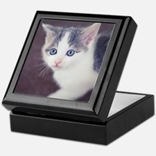 Kitten looking up with big blue eyes. Keepsake Box