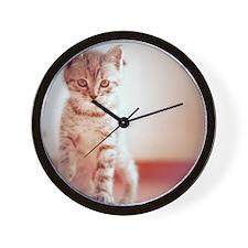 Kitten walking on floor. Wall Clock