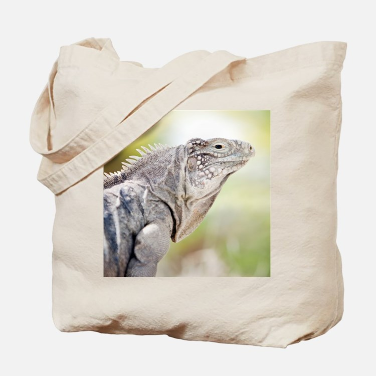 Large green Iguana basking in the sun in  Tote Bag