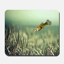 Fish and rosemary. Mousepad