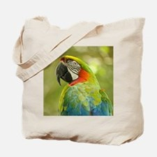 Green macaw parrot on green background. Tote Bag