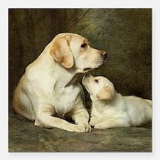 """Labrador dog with her pu Square Car Magnet 3"""" x 3"""""""
