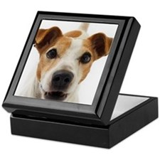 Jack Russell Terrier Keepsake Box