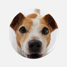 "Jack Russell Terrier 3.5"" Button"