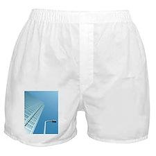 Osaka, Japan Boxer Shorts