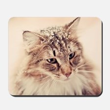 Norwegian Forest Cat enjoying the snow. Mousepad