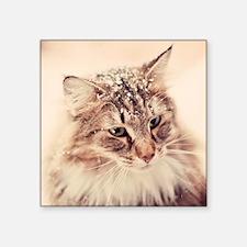 "Norwegian Forest Cat enjoyi Square Sticker 3"" x 3"""