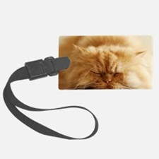 Persian cat sleeping on floor. Luggage Tag