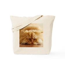 Persian cat sleeping on floor. Tote Bag