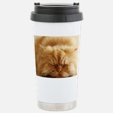 Persian cat sleeping on Stainless Steel Travel Mug