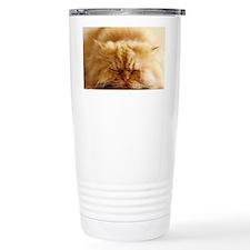 Persian cat sleeping on Travel Coffee Mug