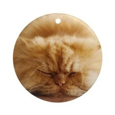 Persian cat sleeping on floor. Round Ornament