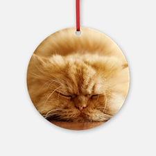 Persian cat sleeping on floor. Round Ornament