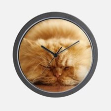 Persian cat sleeping on floor. Wall Clock