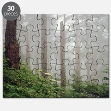 Misty woods in forest. Puzzle