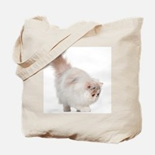 Persian kitten (3 months old) Tote Bag