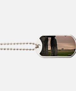 Picture of bird flying past Stonehenge on Dog Tags