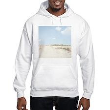 Nakatajima sand dunes. Hoodie