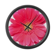 Pink gerbera daisy isolated on wh Large Wall Clock