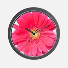 Pink gerbera daisy isolated on white. Wall Clock