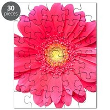 Pink gerbera daisy isolated on white. Puzzle
