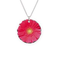 Pink gerbera daisy isolated  Necklace