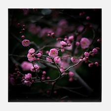 Plum blossoms. Tile Coaster