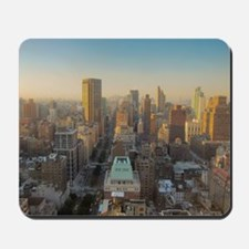 New York City, Manhattan, Midtown, Park  Mousepad