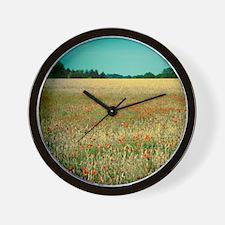 Poppy field. Wall Clock