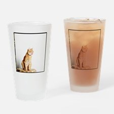 Red tomcat sitting on a wooden tabl Drinking Glass