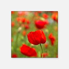 "Red poppies in cornfield, F Square Sticker 3"" x 3"""