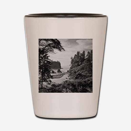 Ruby Beach, Olympic National Park, Wash Shot Glass