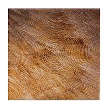 Rings on Log Tile Coaster